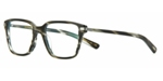 OLIVER PEOPLES OV5270U STONE